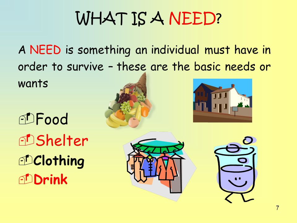 WHAT IS A NEED Food Shelter Clothing Drink