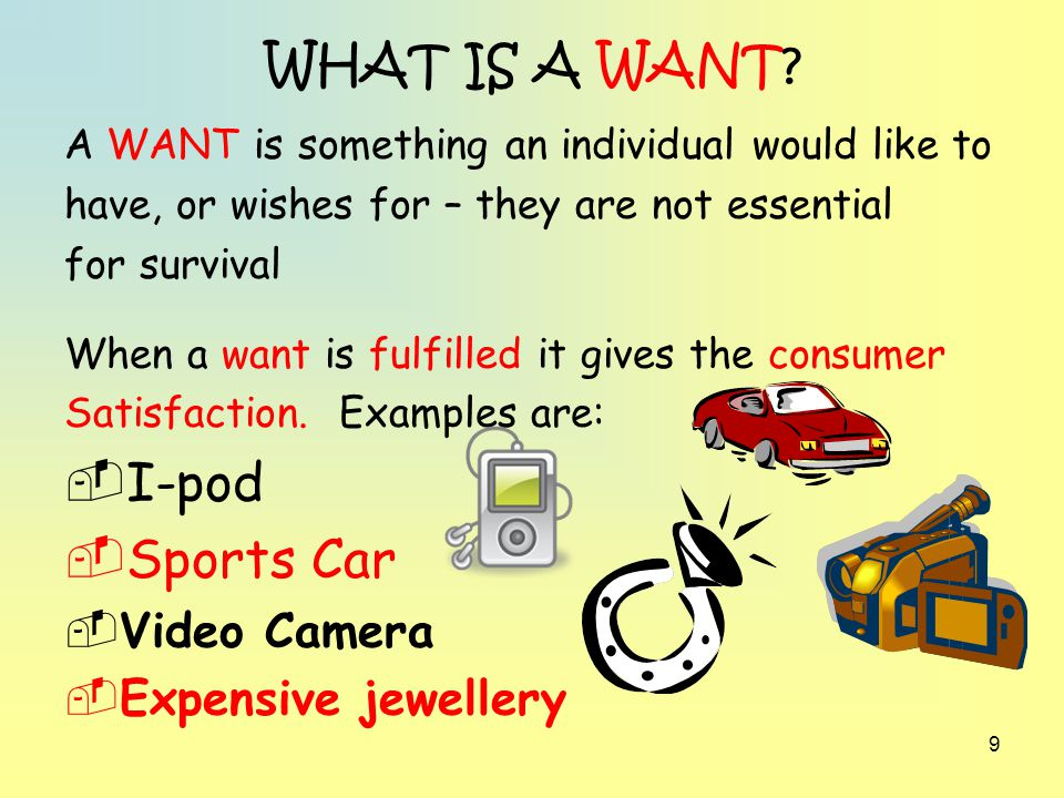 WHAT IS A WANT I-pod Sports Car Video Camera Expensive jewellery