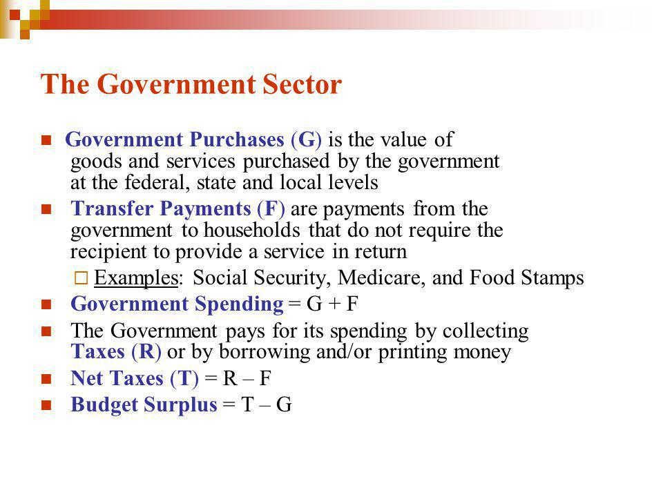 The Government Sector