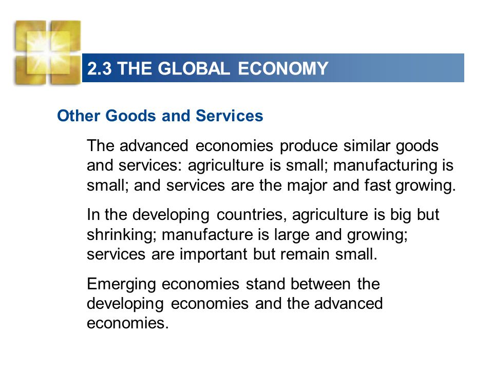 2.3 THE GLOBAL ECONOMY Other Goods and Services