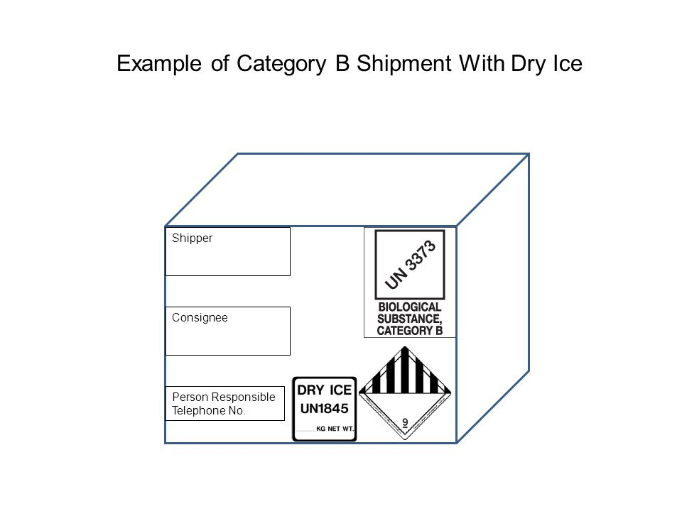 Example of Category B Shipment With Dry Ice