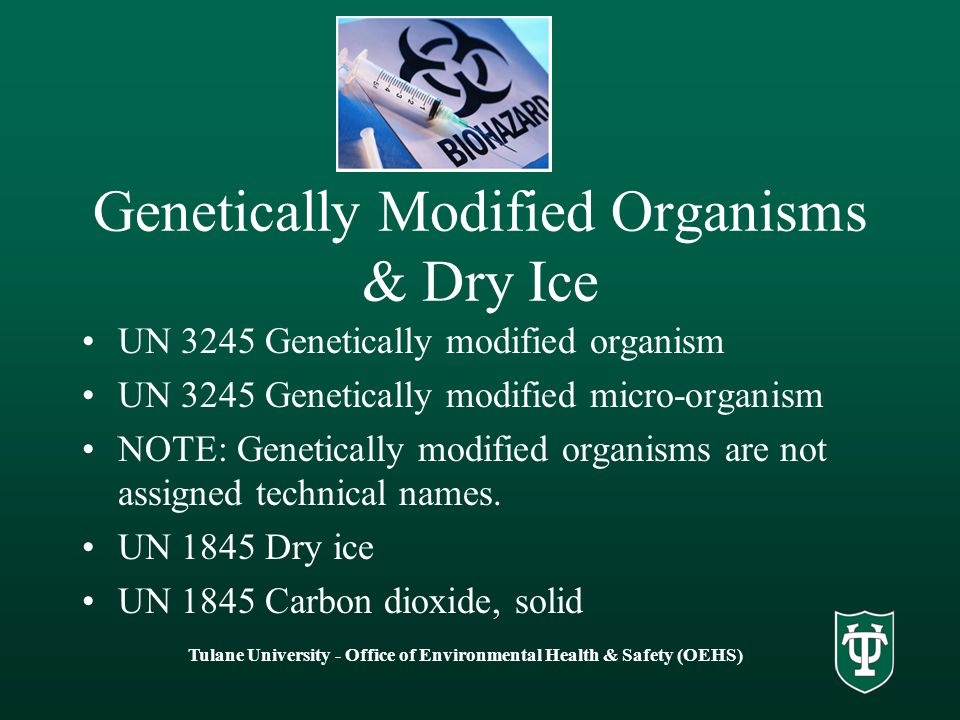 Genetically Modified Organisms & Dry Ice