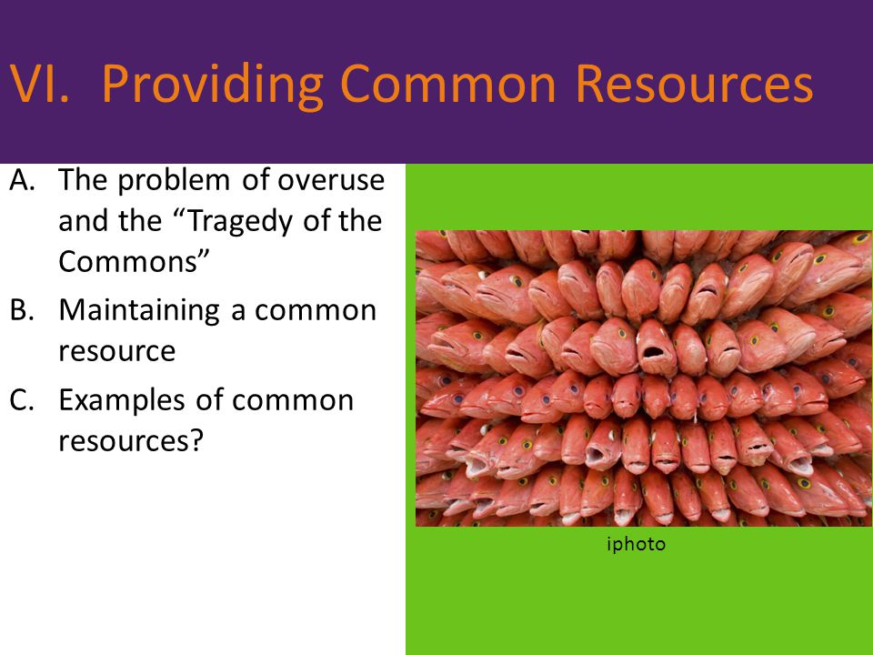 VI. Providing Common Resources