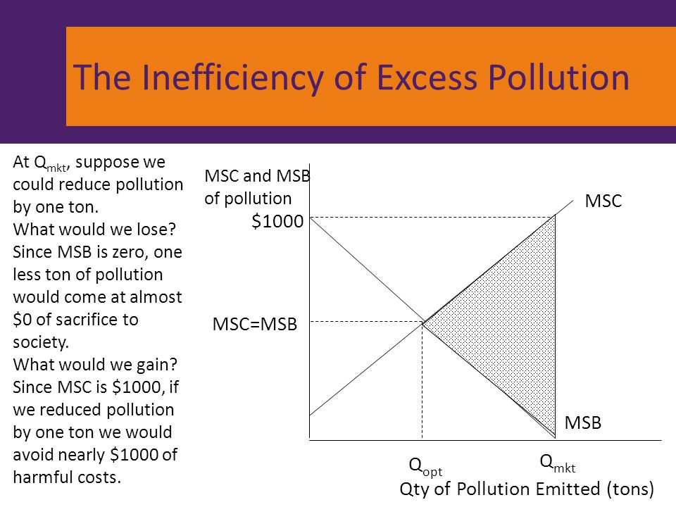The Inefficiency of Excess Pollution
