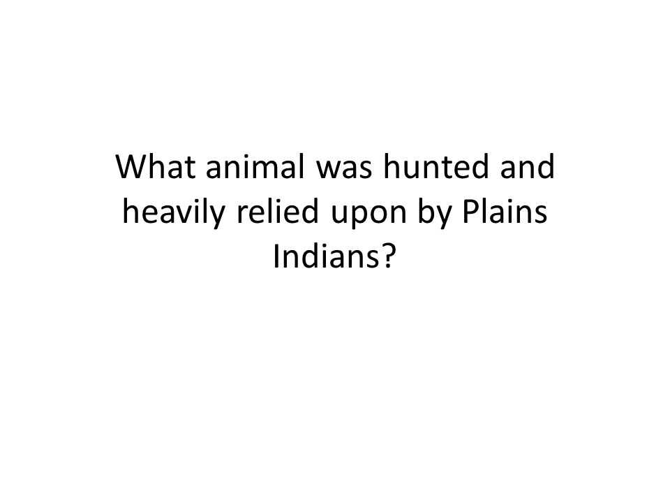 What animal was hunted and heavily relied upon by Plains Indians