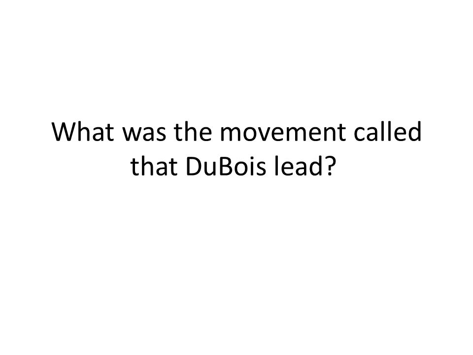 What was the movement called that DuBois lead