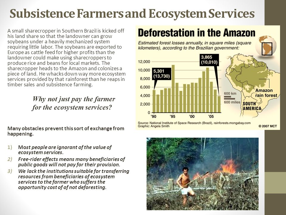 Subsistence Farmers and Ecosystem Services