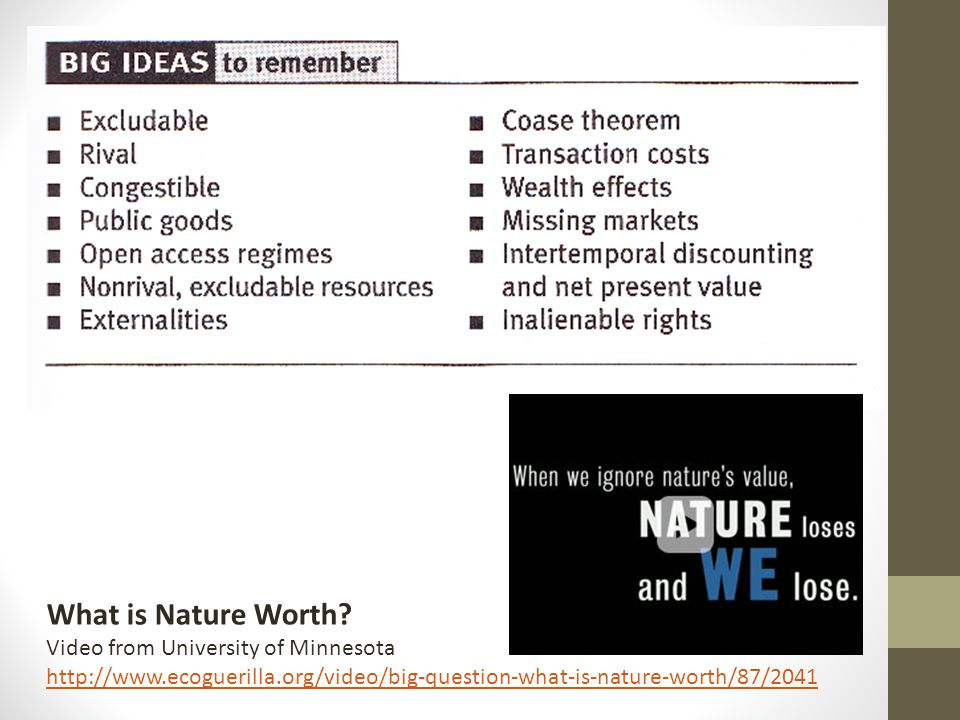What is Nature Worth Video from University of Minnesota
