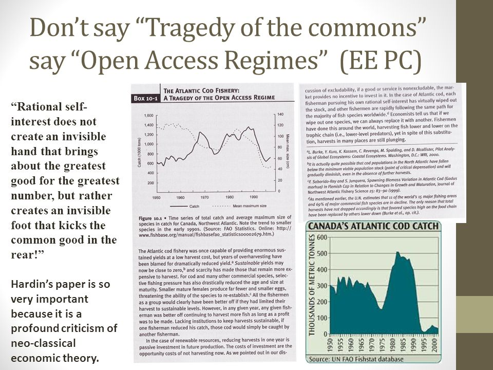 Don't say Tragedy of the commons say Open Access Regimes (EE PC)