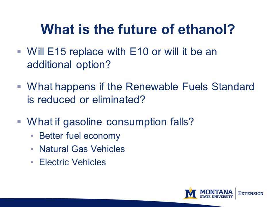 What is the future of ethanol