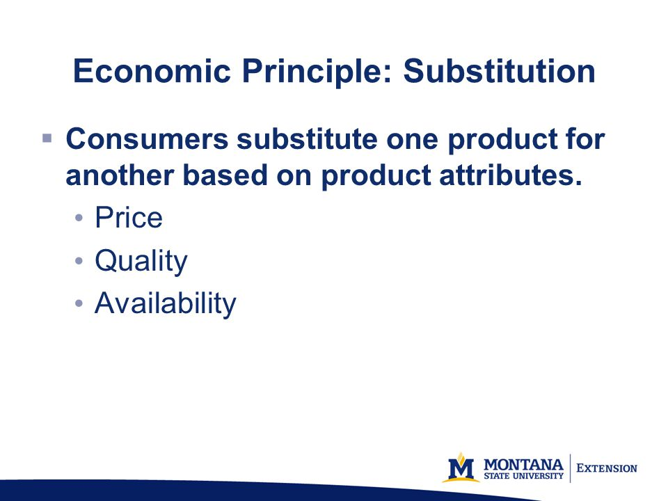 Economic Principle: Substitution