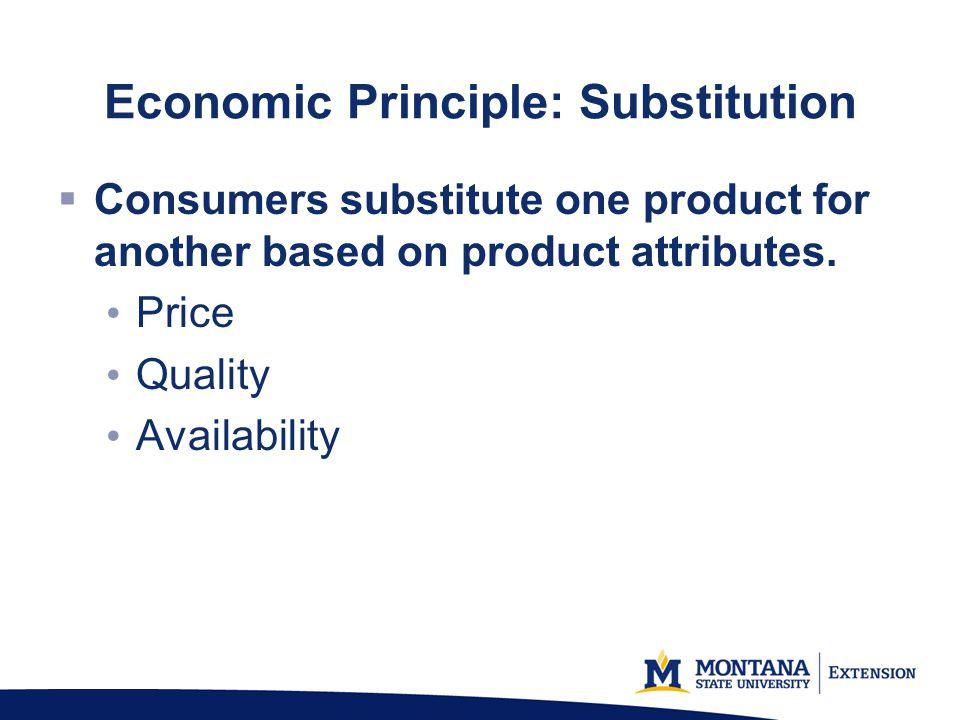 Economic Principle: Substitution