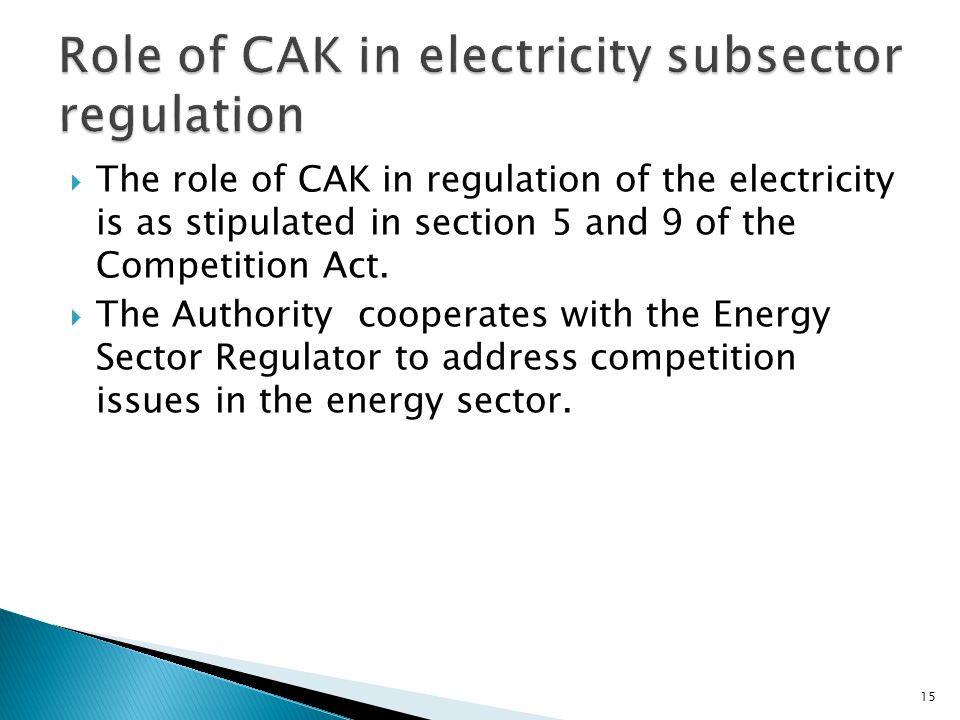Role of CAK in electricity subsector regulation