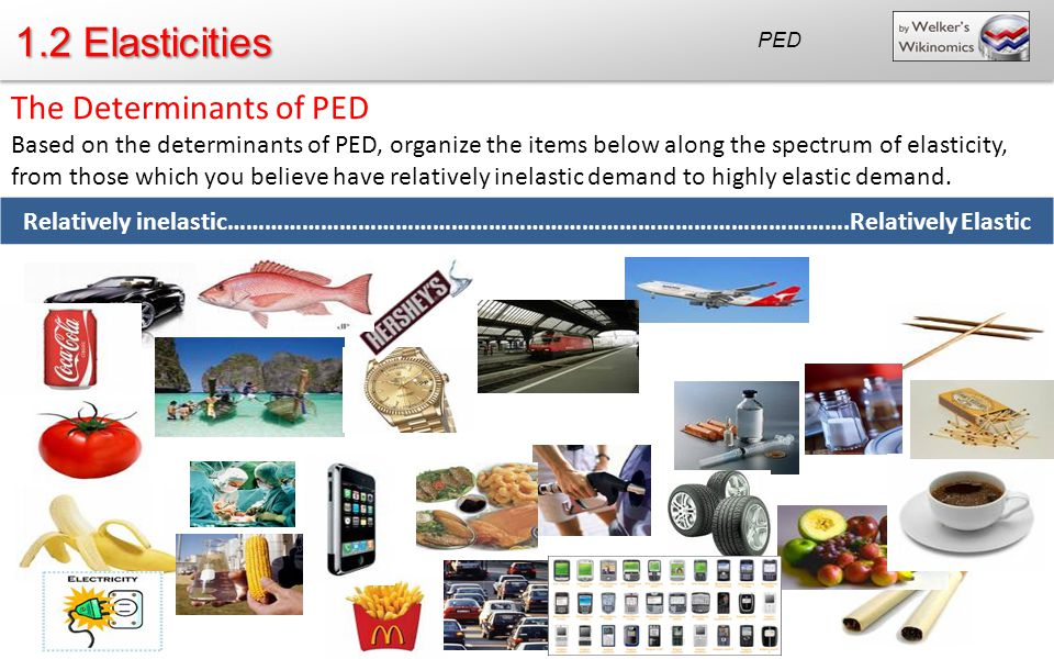 1.2 Elasticities The Determinants of PED