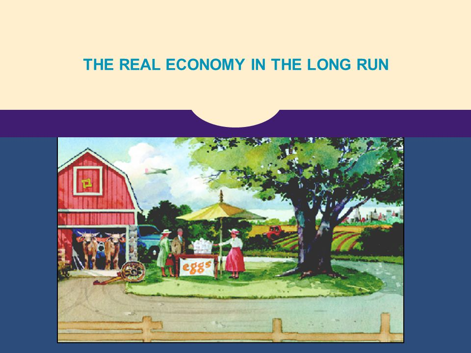 THE REAL ECONOMY IN THE LONG RUN