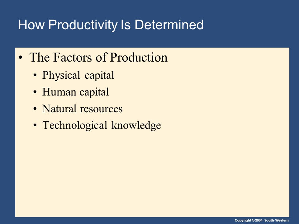 How Productivity Is Determined