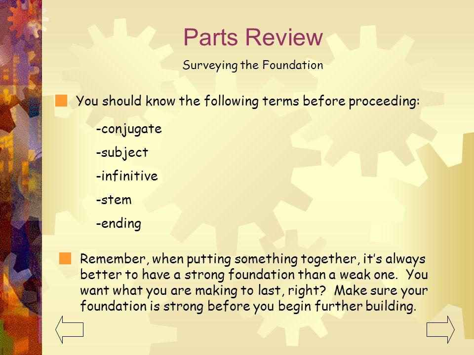 Surveying the Foundation