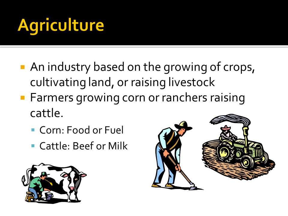Agriculture An industry based on the growing of crops, cultivating land, or raising livestock. Farmers growing corn or ranchers raising cattle.
