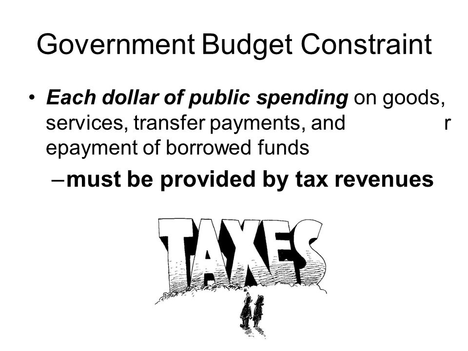 Government Budget Constraint