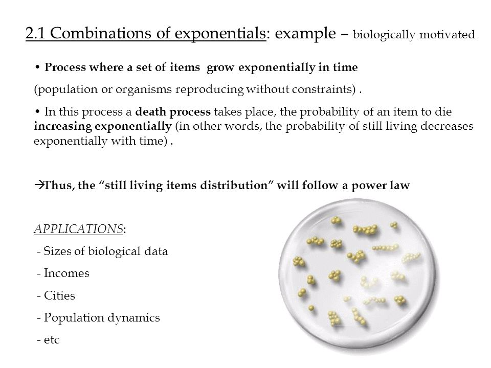 2.1 Combinations of exponentials: example – biologically motivated