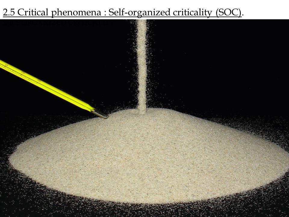 2.5 Critical phenomena : Self-organized criticality (SOC).