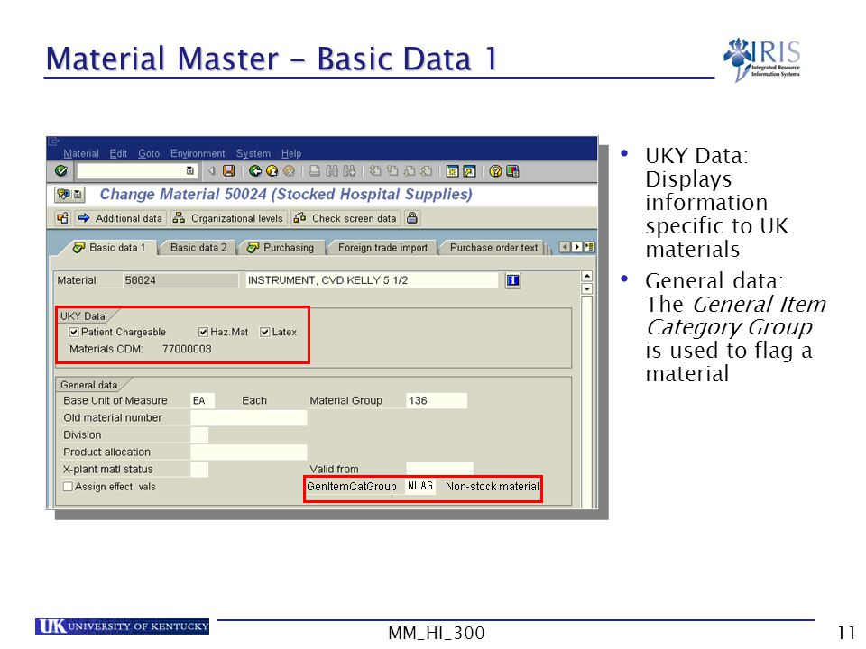 Material Master - Basic Data 1