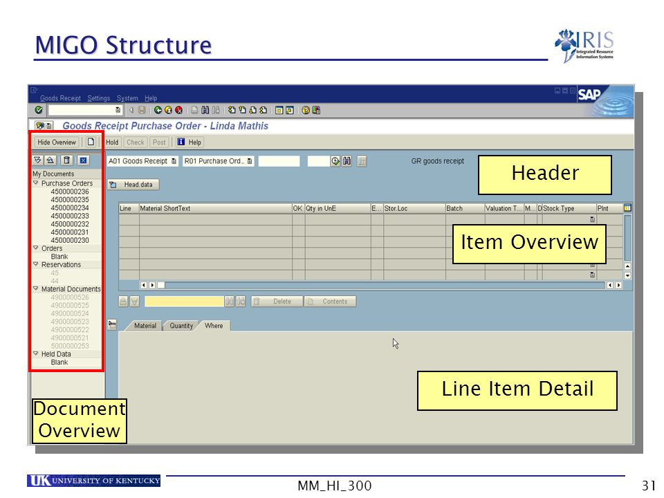 MIGO Structure Header Item Overview Line Item Detail Document Overview