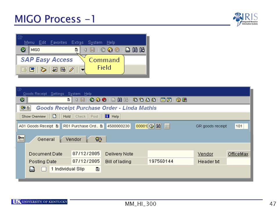 MIGO Process -1 Command Field MM_HI_300