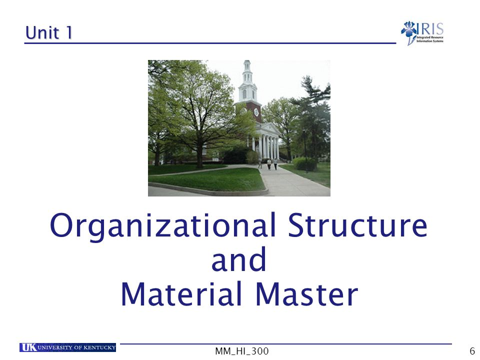 Organizational Structure and