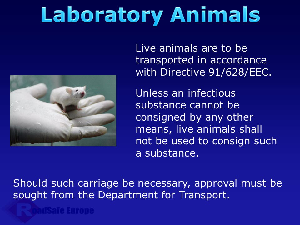 Laboratory Animals Live animals are to be transported in accordance with Directive 91/628/EEC.