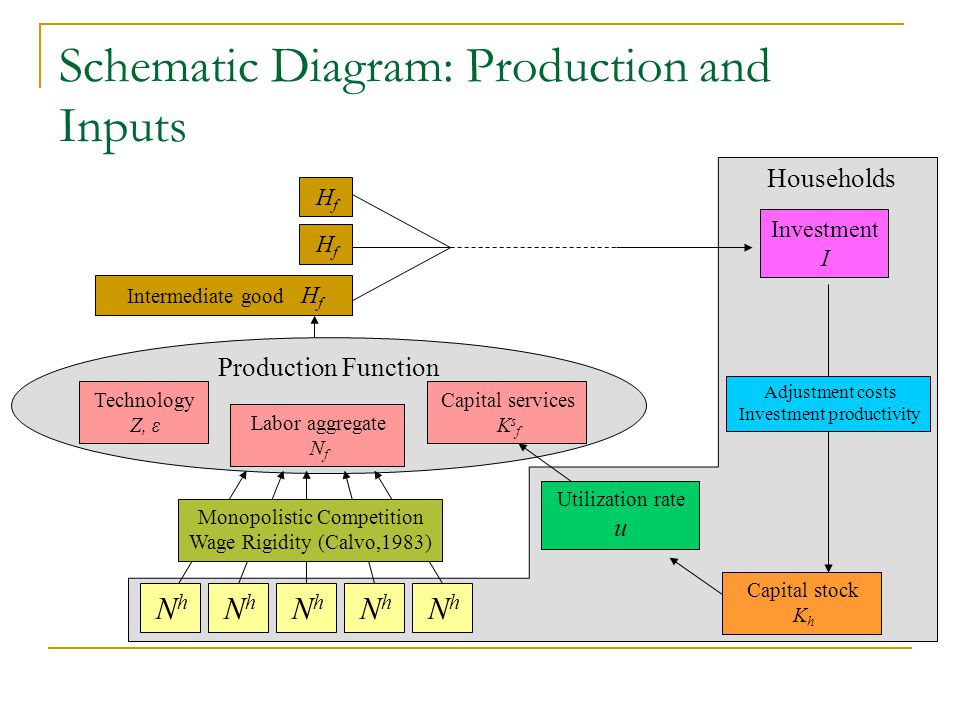Schematic Diagram: Production and Inputs