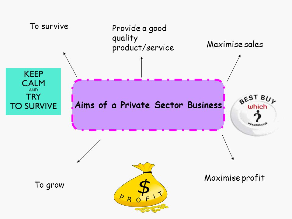 Aims of a Private Sector Business