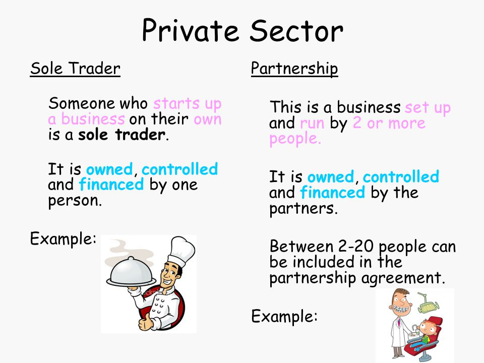 Private Sector Sole Trader