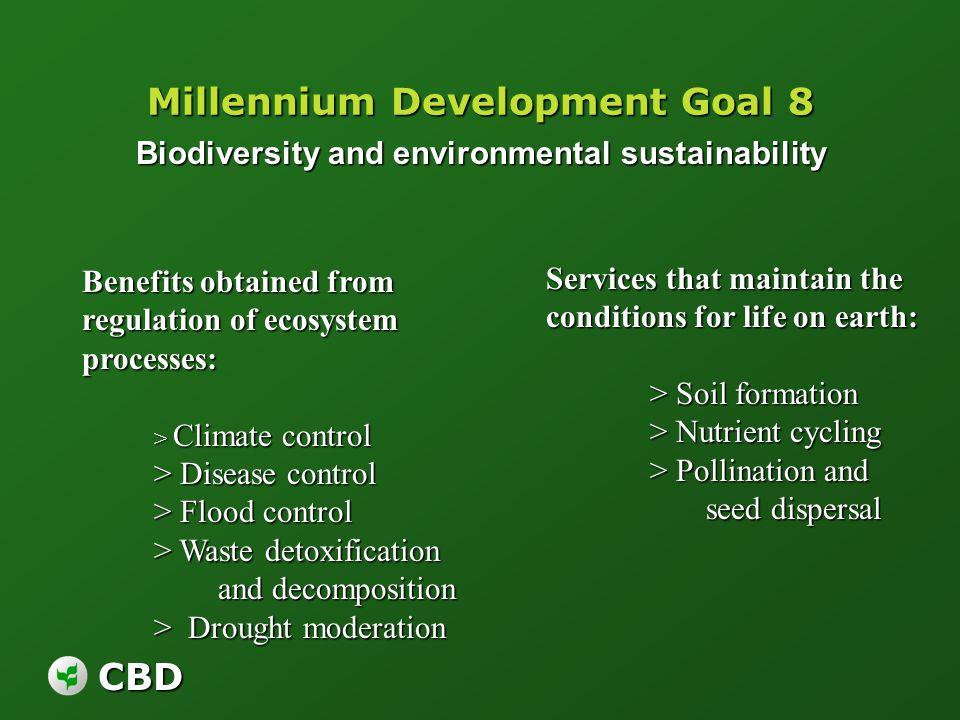 Millennium Development Goal 8