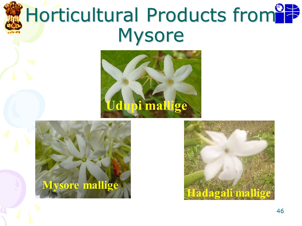 Horticultural Products from Mysore