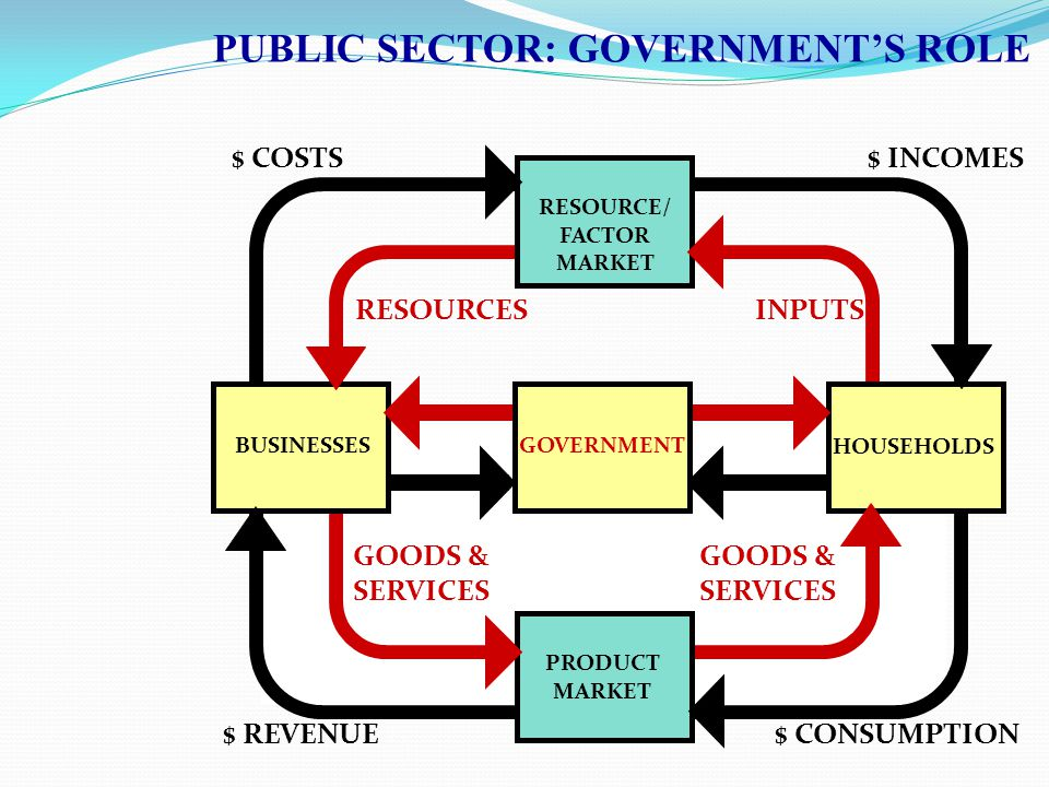 PUBLIC SECTOR: GOVERNMENT'S ROLE