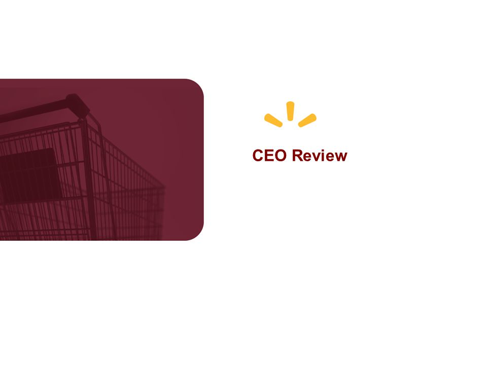 CEO Review