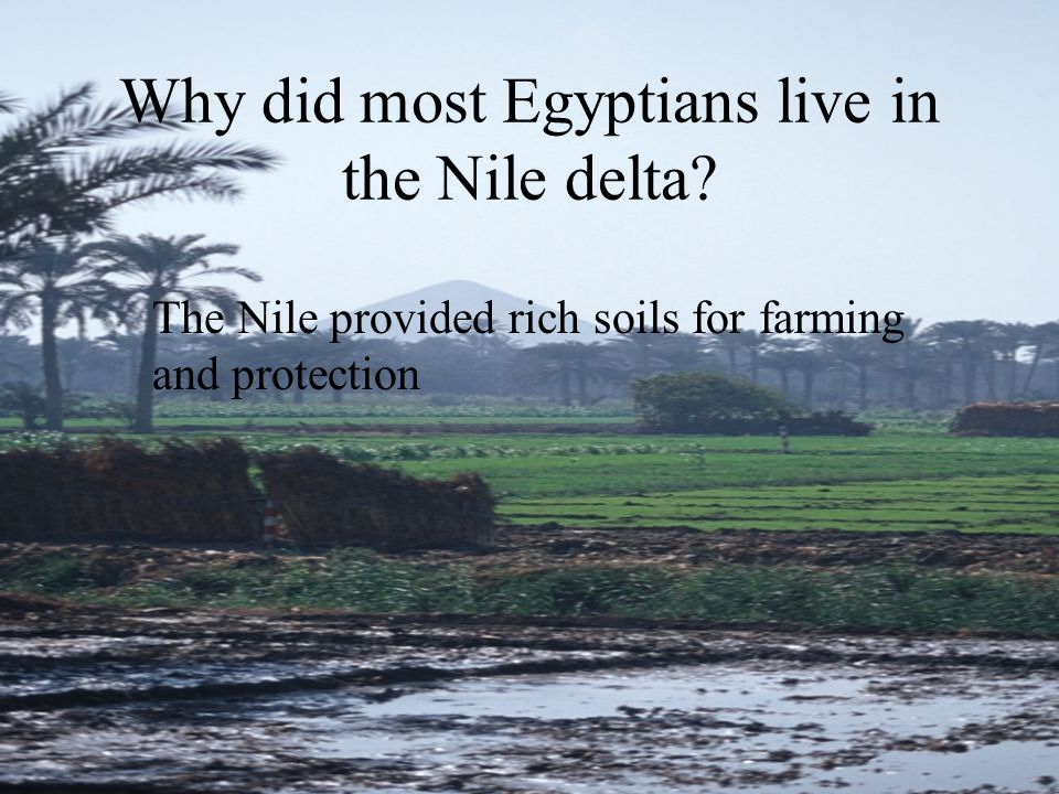 Why did most Egyptians live in the Nile delta