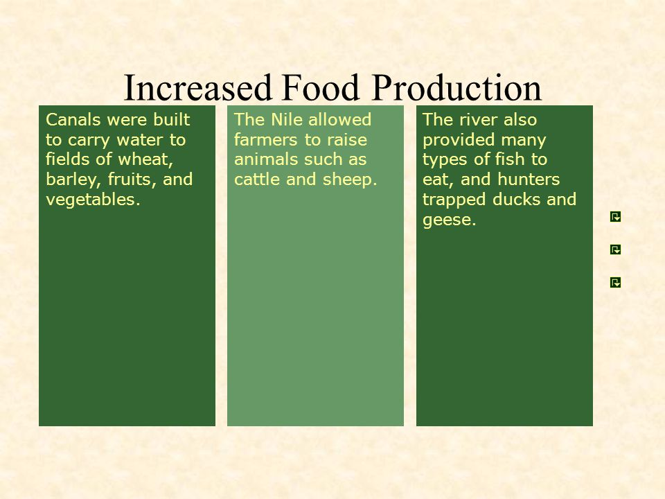 Increased Food Production