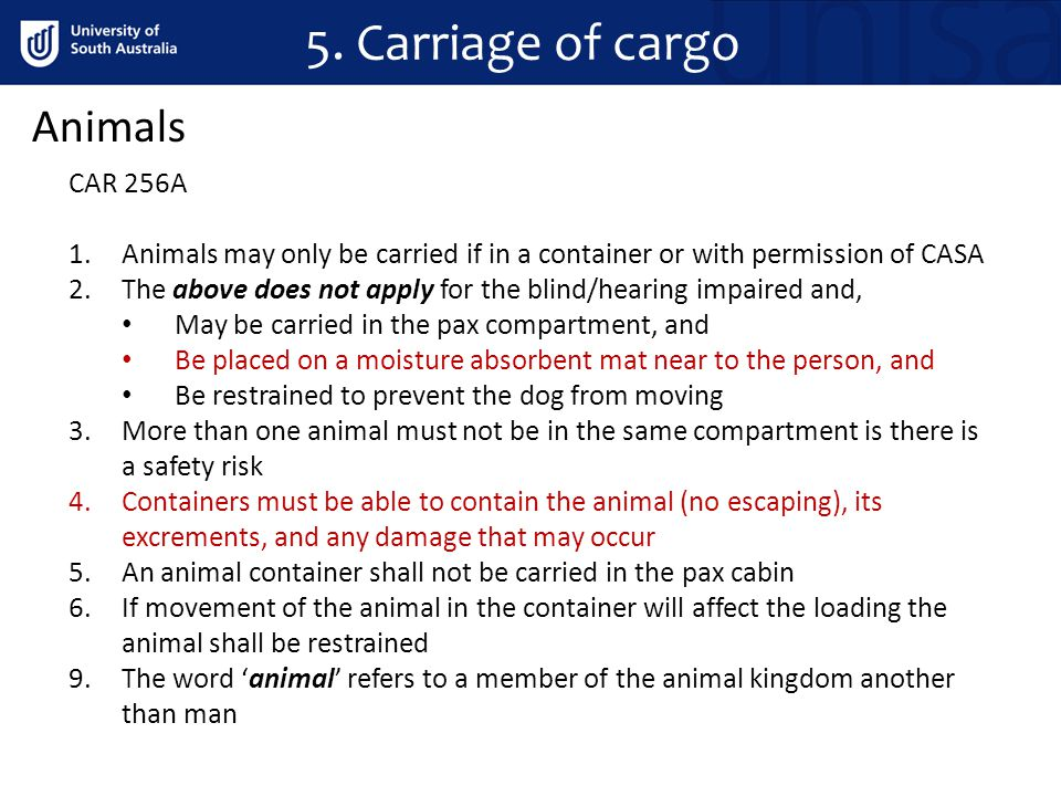 5. Carriage of cargo Animals CAR 256A