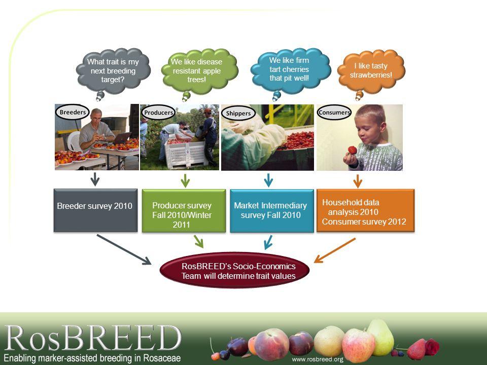 RosBREED Household data analysis 2010 Breeder survey 2010