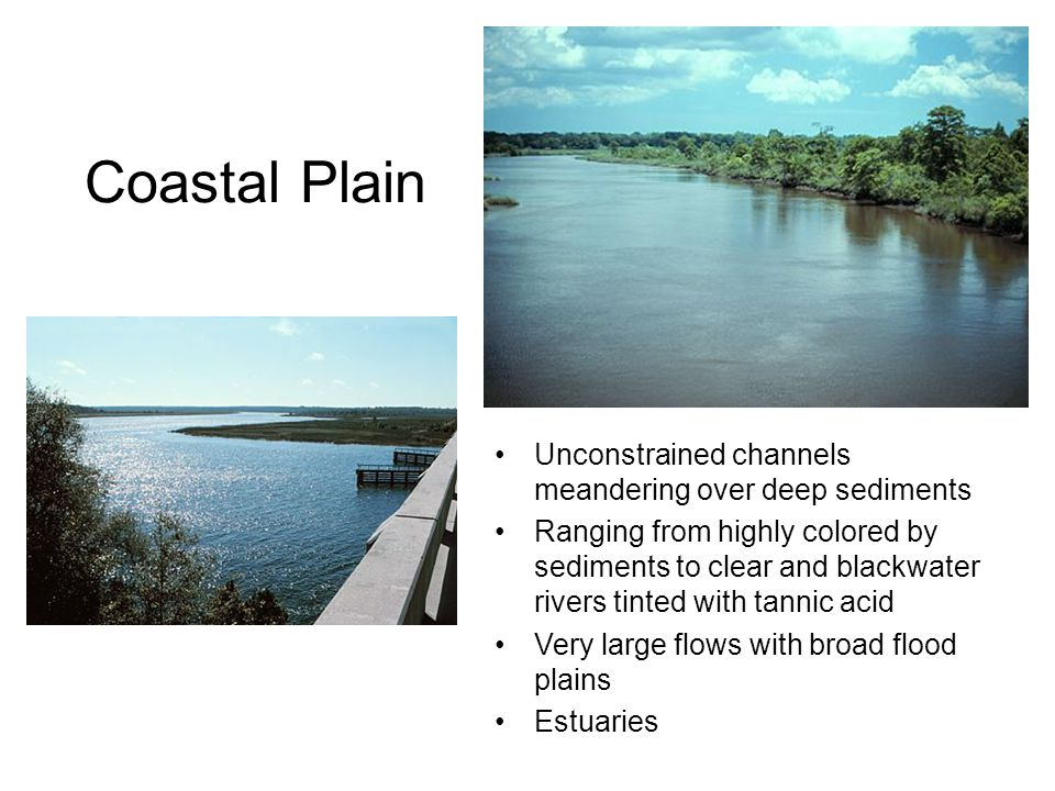 Coastal Plain Unconstrained channels meandering over deep sediments