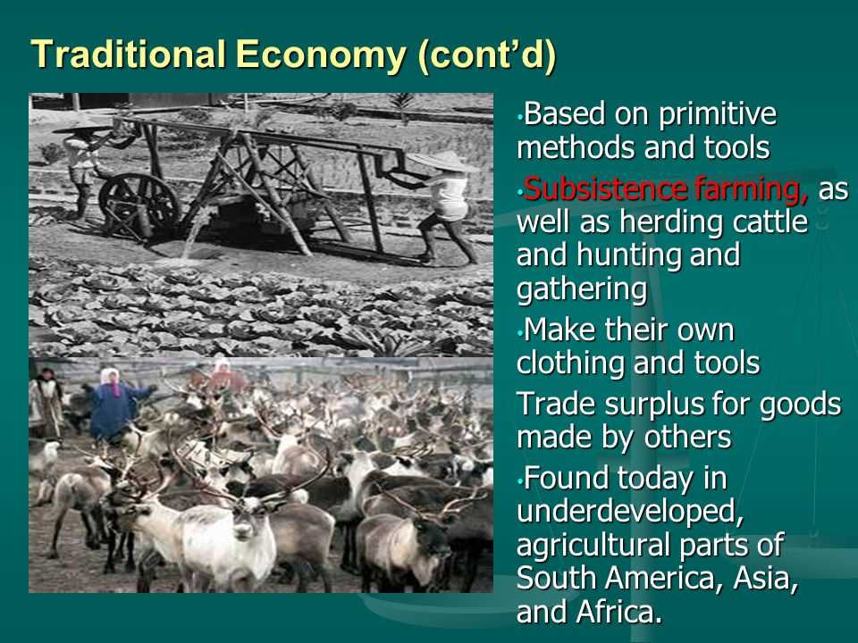 Traditional Economy (cont'd)