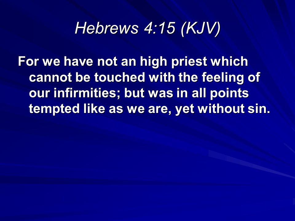 Hebrews 4:15 (KJV)
