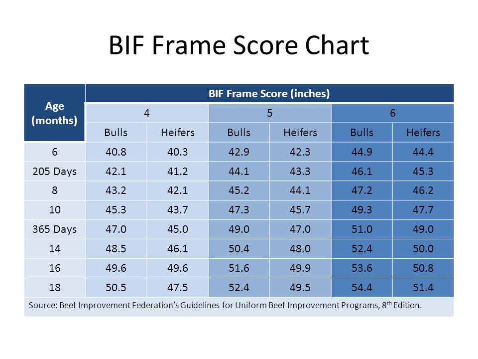 BIF Frame Score (inches)