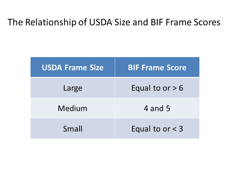The Relationship of USDA Size and BIF Frame Scores