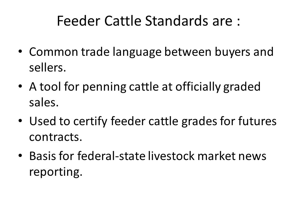 Feeder Cattle Standards are :