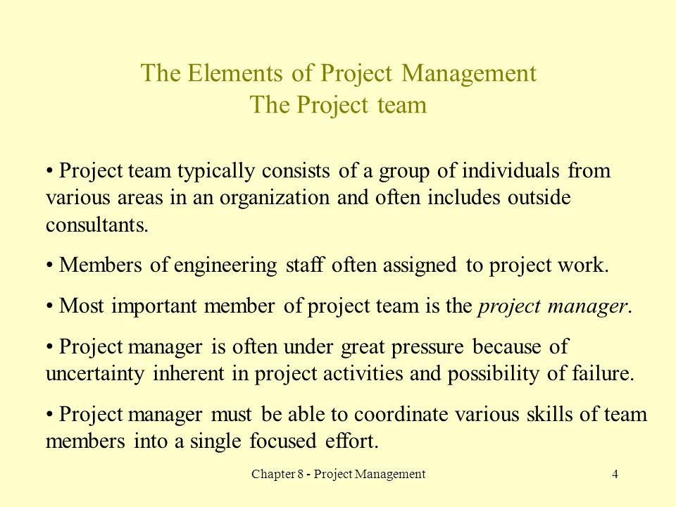 The Elements of Project Management The Project team
