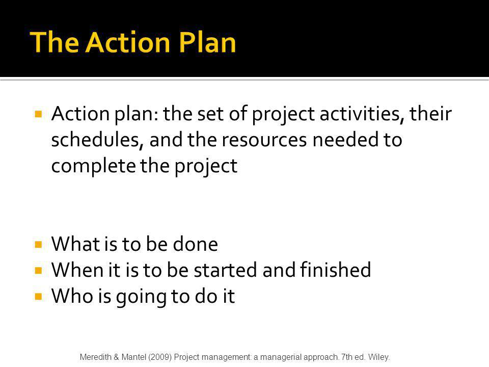 The Action Plan Action plan: the set of project activities, their schedules, and the resources needed to complete the project.