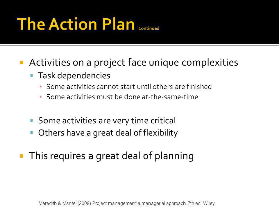 The Action Plan Continued